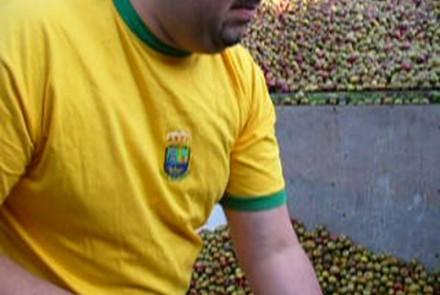 Majada 2008 – Herradero